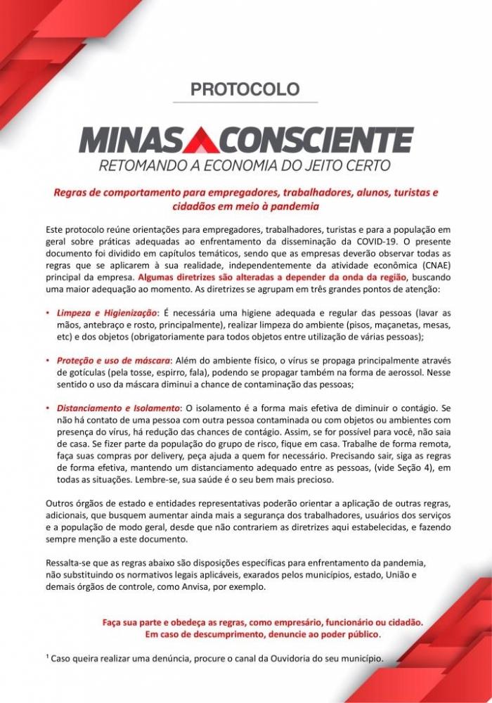 Minas Consciente