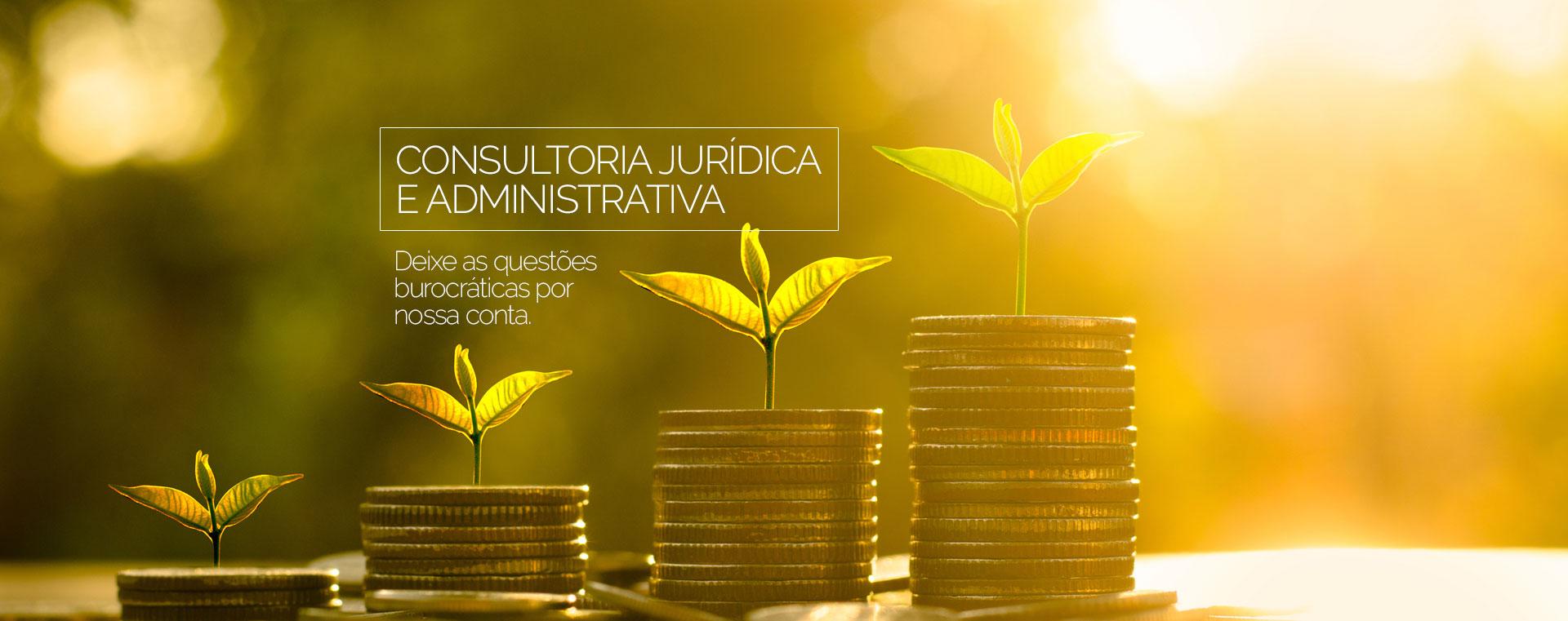 Consultoria Jurídica e Administrativa