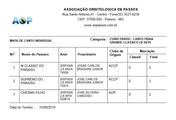 Curió Pardo - Canto Praia Grande Classico