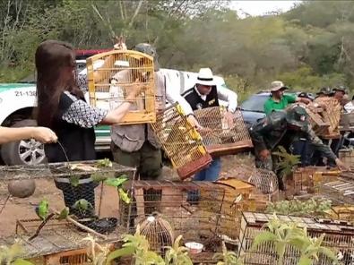 Vídeo foi filmado no município de �gua Branca, em Alagoas (Foto: BBC)