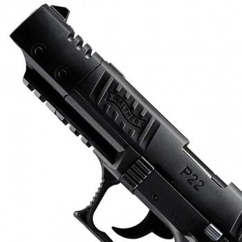 P22 TARGET