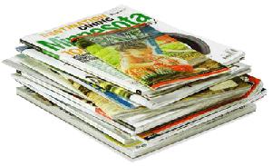 Revistas de Fofocas, Novelas e Famosos