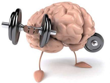 Alimentos que turbinam o cérebro