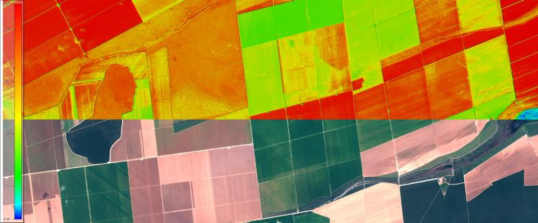 Imagem NDVI (Câmera Multiespectral)